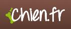Logo bull terrier chien.fr